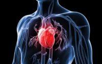 Bệnh tim mạch và triệu chứng